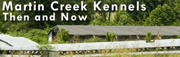 martin creek then and now header