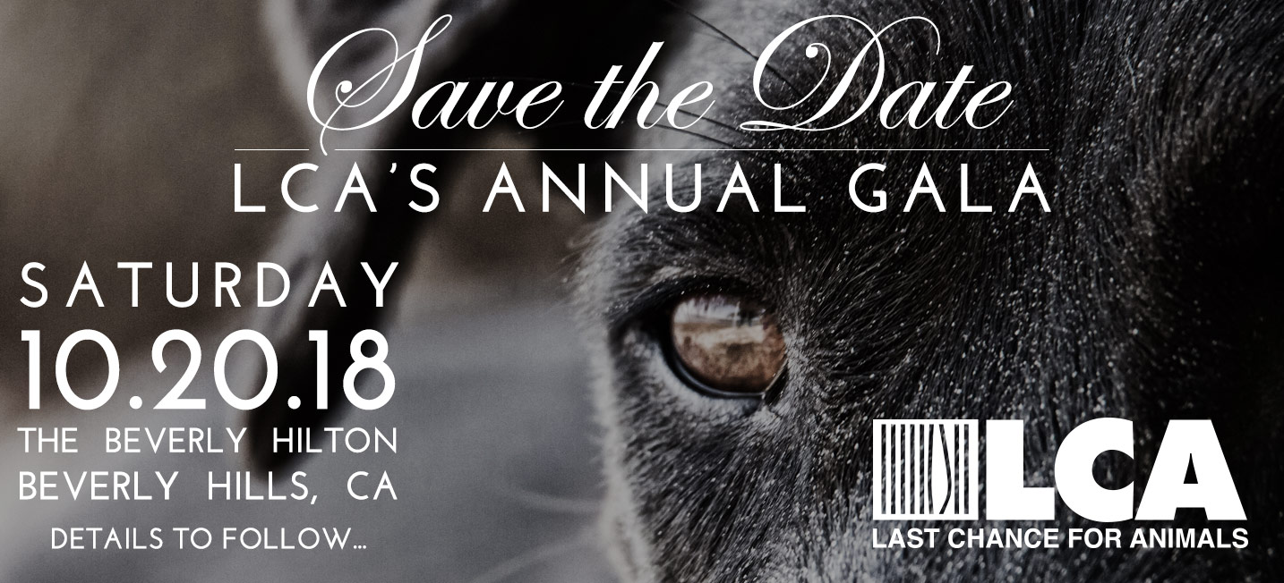 LCA 2018Gala Save site banner 717x326