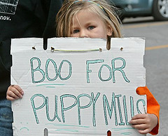 Boo for Puppy Mills