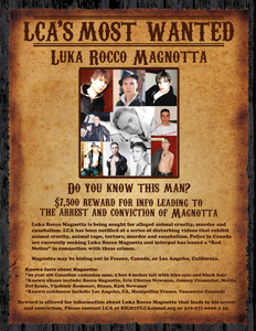 LCA Most Wanted Luka Rocco Magnotta sm