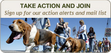 Take action and join!