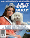 Miss Teen Adopt Dont Shop thumb