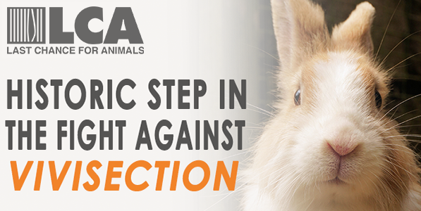 BREAKING!! Obama Signs Chemical Safety Act, Dramatically Reducing Animal Testing
