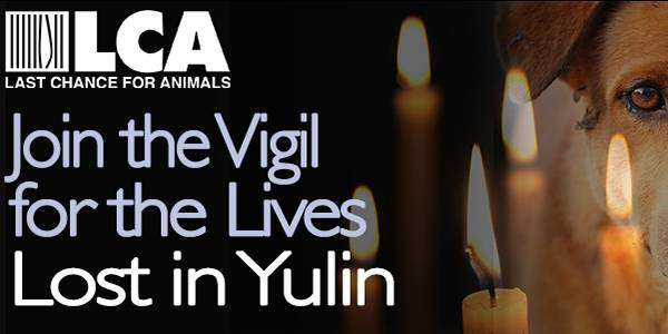 L.A. Vigil for the Dogs of Yulin - 6/30/16! Join LCA and Chris DeRose!!