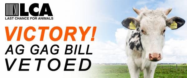 VICTORY!! Missouri Ag Gag Bill Vetoed by Governor Jay Nixon!