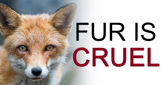 Join The Fur Free Friday Protests!! Friday, November 25, 2016!