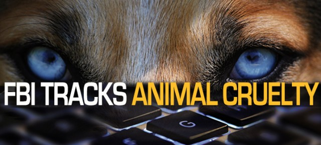 LCA Launches 'FBI Tracks Animal Cruelty' Campaign Urging Participation in National Animal Cruelty Database